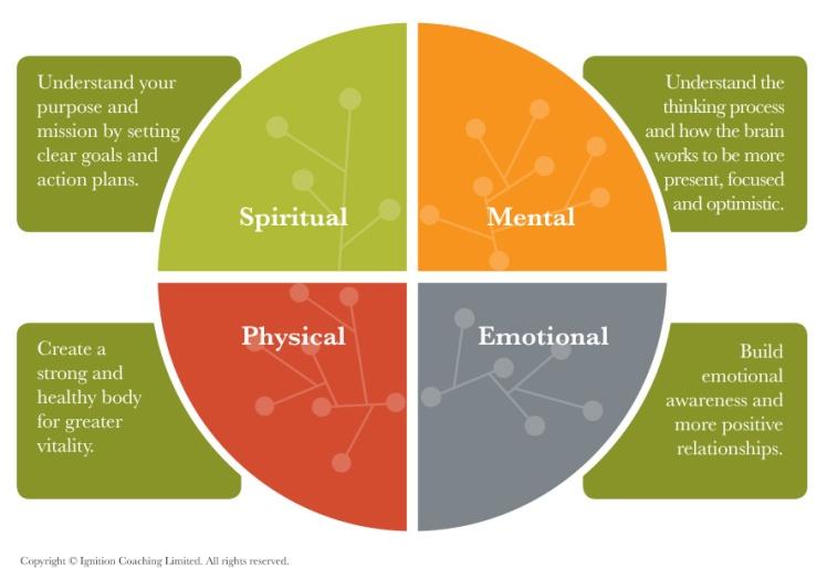 wellness-chart-01